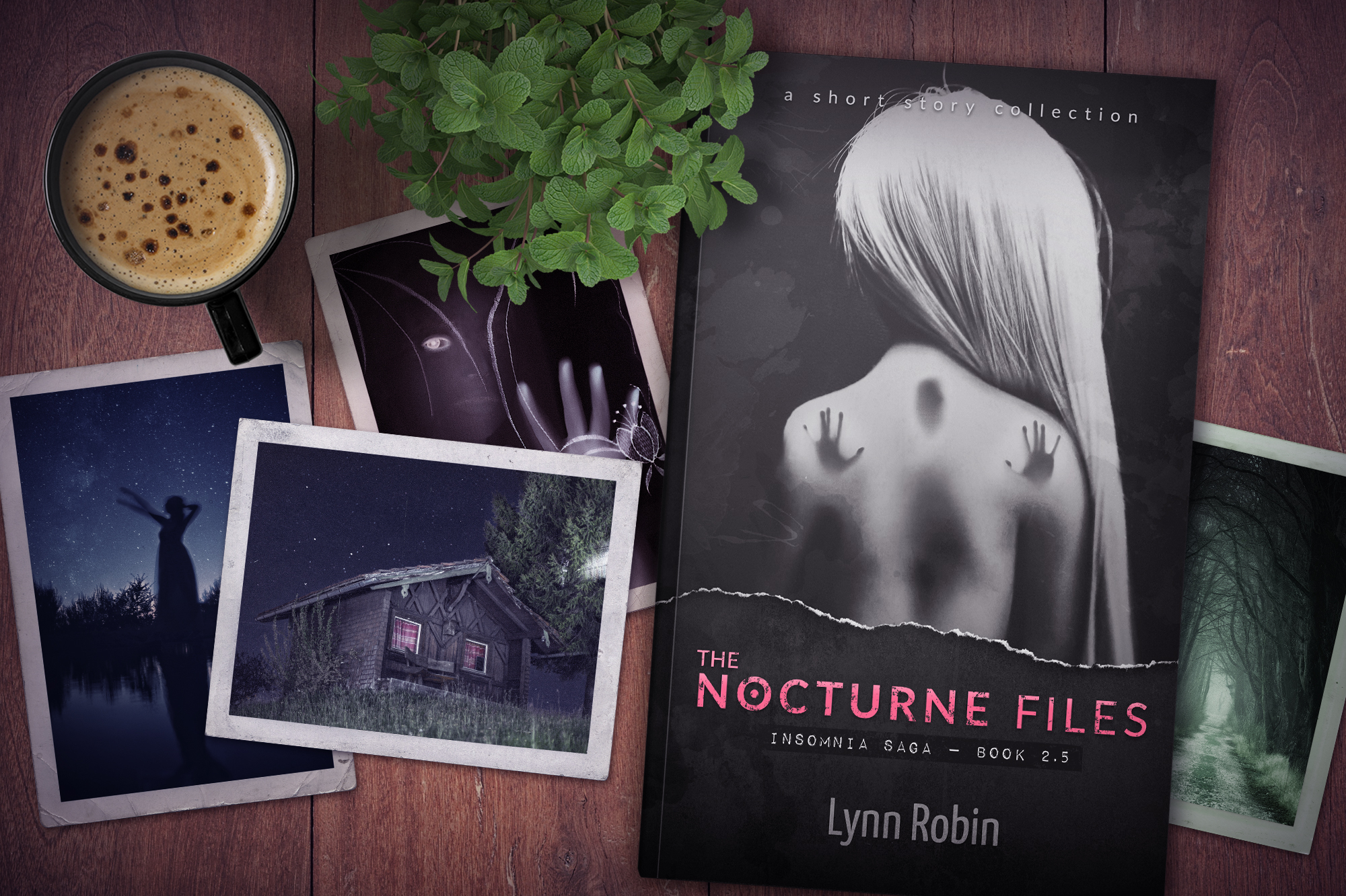 NEW RELEASE | OUT NOW: The Nocturne Files (Insomnia Saga 2.5)